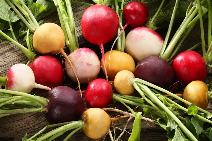 September is time to sow radish